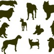 Stock Vector: Dog silhouettes