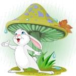 Mushroom Rabbit — Stock Vector
