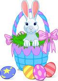 Korb-bunny — Stockvektor