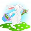 Easter Bunny — Stock Vector #2497302