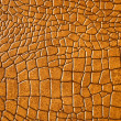 Brown snakeskin or crocodile texture — 图库照片