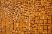 Brown snakeskin or crocodile texture — Stock Photo
