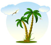 Palm and coco — Stock Vector