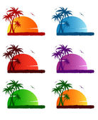 Palms — Stock Vector