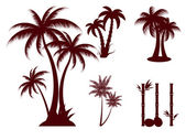 Palms — Stock Vector