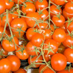 Red tomatoes-cherry — Stock Photo