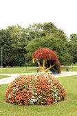 Floral gardens — Stock Photo