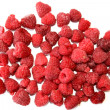Frozen Raspberries — Stock fotografie
