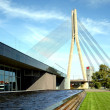 Stock Photo: Panoramof cable bridge