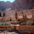 St. Catherine monastery — Stock Photo