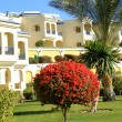 Stock Photo: Resort in Sharm-el-Sheikh