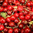 Cherries — Stock Photo #1296474