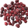 Frozen Blackberries — Foto de Stock