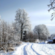 Snow road in rural locality — Stock Photo #1297497