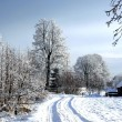 Snow road in rural locality - Stock Photo