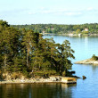 Islands on Stockholm archipelago — Stock Photo