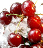 Fresh juicy cherry — Stock Photo