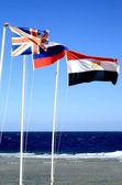 Flags on beach — Stock Photo