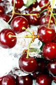 Fresh juicy cherry in ice — Stock Photo