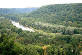 Forests and river Gauja — Stock Photo