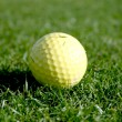 Golf ball on putting green - Stock Photo