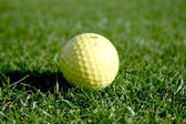 Golf ball on putting green — Stock Photo