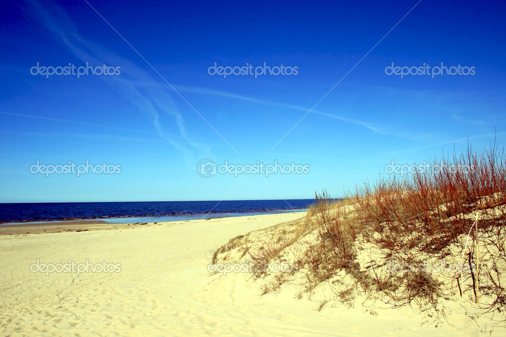 Baltic sea coastline in Latvia early in spring  Stock Photo #1320697