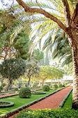 Magnificent Bahai garden in Acre — Stock Photo