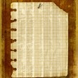 Old notebook sheet attached to wooden wa — Stock Photo #1140330