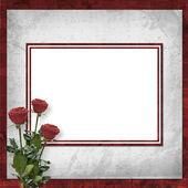 Card for congratulation or invitation wi — Stock Photo