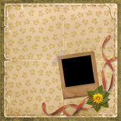 Beige floral background with Old photofr — Stock Photo