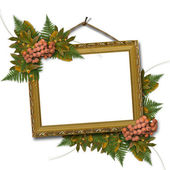 Picture gold frame with a mountain ash a — 图库照片