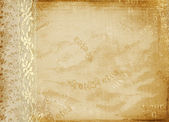 Vintage cover for album with gold lace — Fotografia Stock