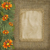 Herbarium of flowers and leaves with frame on t — Stock Photo