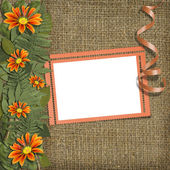 Herbarium of flowers and leaves — Stock Photo