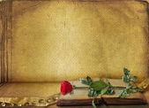 Ouvrir le livre ancien avec rose — Photo