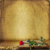 Open book with beautiful red rose — Stok fotoğraf