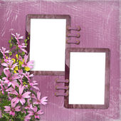 Pink background with two frames — Stock Photo