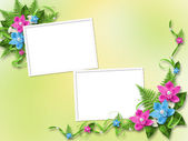 Frame for photo with orchids — Stock Photo
