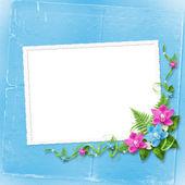 招待状やお祝いカード — ストック写真