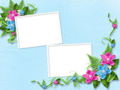 Frame for photo with blue orchids — Stock Photo