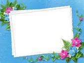 Rám s modré a růžové orchideje — Stock fotografie