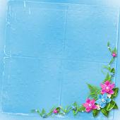 Card for invitation or congratulation — Stock Photo