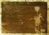 Ancient scratch abstract background — Stock Photo