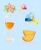 Orange flower brilliant — Stock Vector