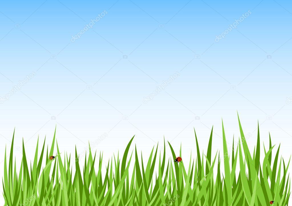 фон для сайта трава: