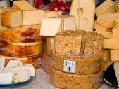Peynirler — Stok fotoğraf