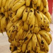 Bananas — Stock Photo #1216317