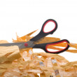 Scissor — Stock Photo #1263181