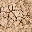 Royalty-Free Stock Photo: Cracked dry earth2